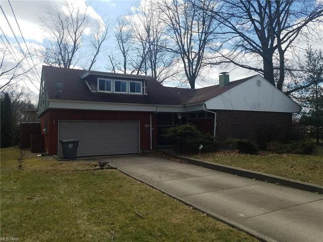 569 Madera Avenue, Youngstown, OH 44504 (MLS #4260837) :: TG Real Estate