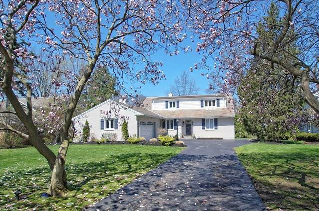22311 S Woodland Road, Shaker Heights, OH 44122 (MLS #4261056) :: RE/MAX Trends Realty