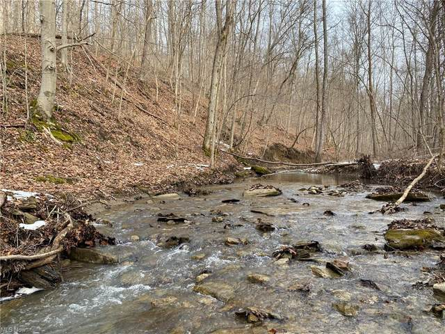 1601 Fisher Road, McConnelsville, OH 43756 (MLS #4262700) :: The Holden Agency