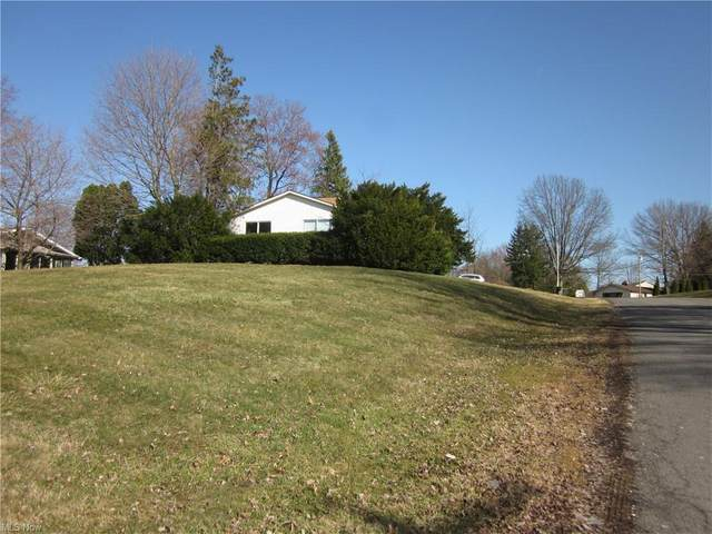3027 Bird Drive, Ravenna, OH 44266 (MLS #4263658) :: Select Properties Realty