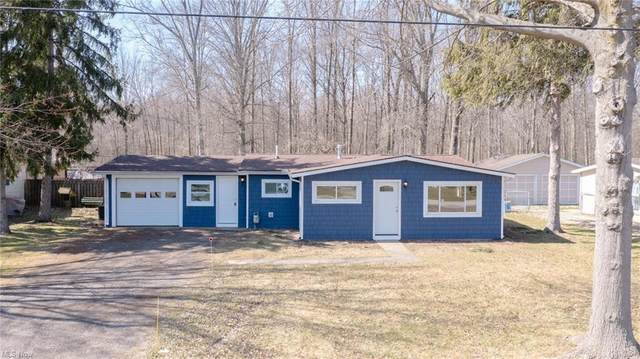 12452 National Drive, Grafton, OH 44044 (MLS #4263876) :: The Art of Real Estate