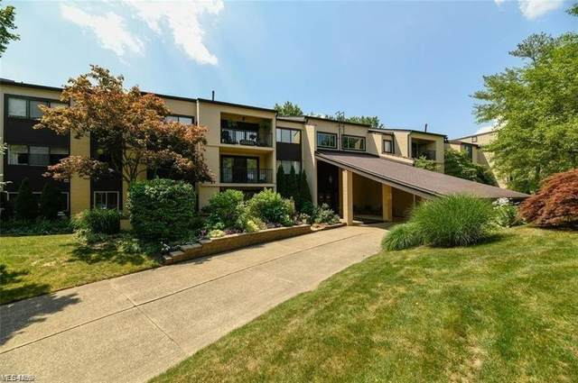 1012 Bunker Drive #205, Fairlawn, OH 44333 (MLS #4263912) :: The Kaszyca Team