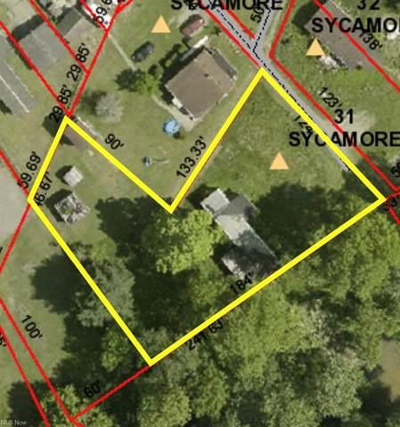 31 Sycamore Street, Dillonvale, OH 43945 (MLS #4264022) :: The Crockett Team, Howard Hanna