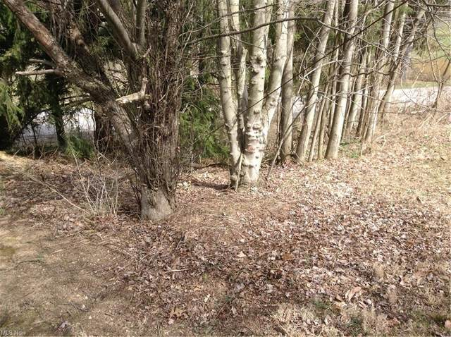 0 Redstone Road, Jacobsburg, OH 43933 (MLS #4264072) :: The Holden Agency