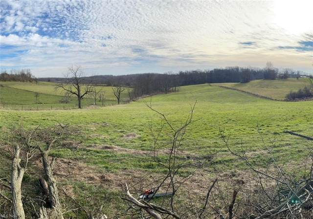 Township Road 267, Amsterdam, OH 43903 (MLS #4264131) :: The Holden Agency