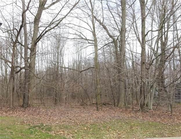 Woodbend, Ravenna, OH 44266 (MLS #4264666) :: Keller Williams Chervenic Realty
