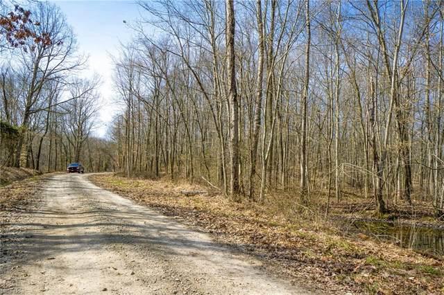 33996 W Buckingham Road, Logan, OH 43138 (MLS #4265065) :: Keller Williams Legacy Group Realty