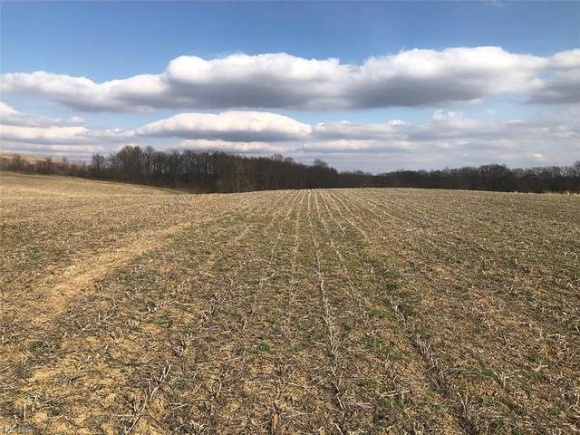 11675 Black Road, Lisbon, OH 44432 (MLS #4266080) :: The Holly Ritchie Team
