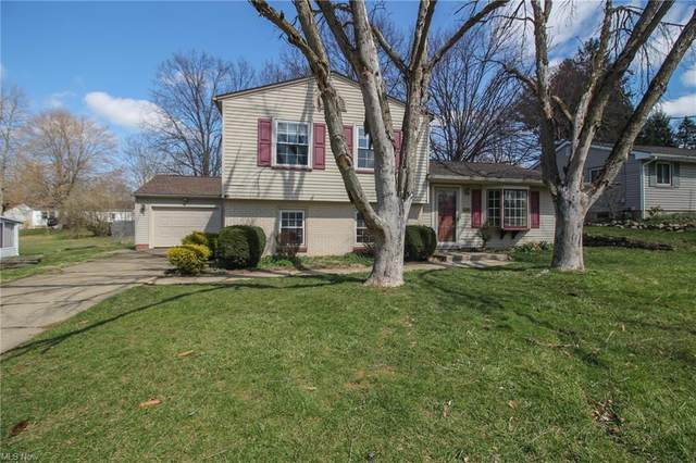 3946 New Road, Austintown, OH 44515 (MLS #4266087) :: Select Properties Realty