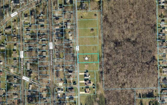 Vl Green Road, Madison, OH 44057 (MLS #4266401) :: The Holden Agency