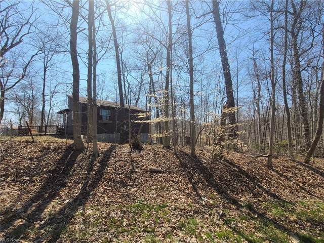State Rd 541, Coshocton, OH 43812 (MLS #4267448) :: RE/MAX Trends Realty