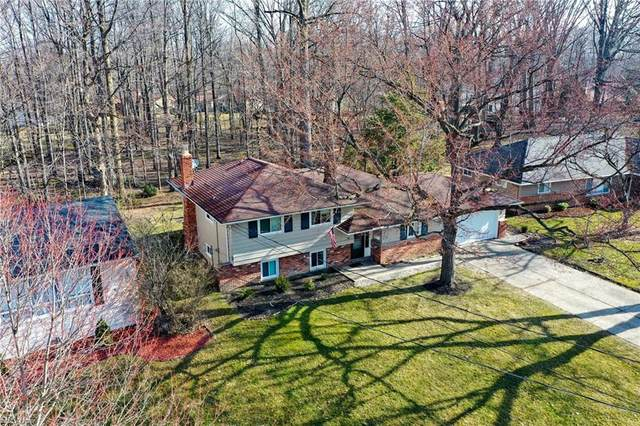 349 Claymore Boulevard, Richmond Heights, OH 44143 (MLS #4267851) :: The Holden Agency