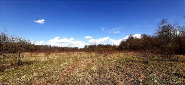 State Route 5 And Blake Boulevard, Cortland, OH 44410 (MLS #4268438) :: TG Real Estate