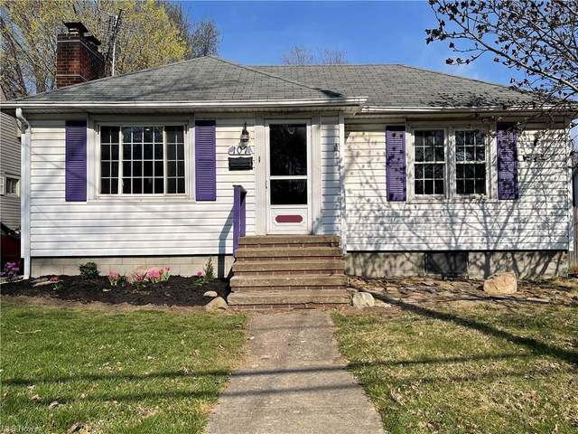 107 Chestnut Street, Painesville, OH 44077 (MLS #4268560) :: Select Properties Realty