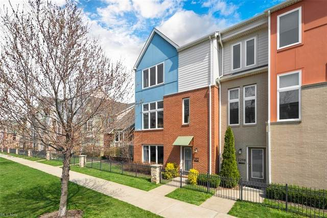 2292 City View Drive, Cleveland, OH 44113 (MLS #4268775) :: The Art of Real Estate