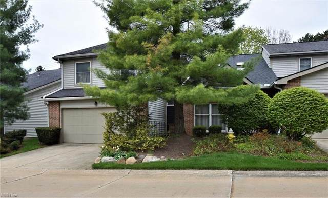 1842 Indian Hills Trail, Akron, OH 44313 (MLS #4268900) :: RE/MAX Trends Realty