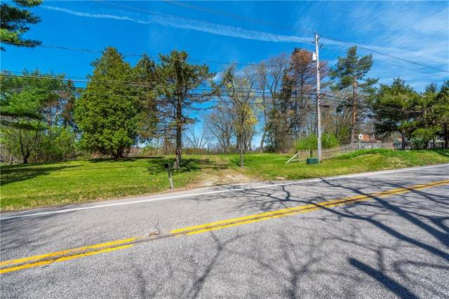 467 Center Road, Hinckley, OH 44233 (MLS #4269509) :: The Jess Nader Team | REMAX CROSSROADS