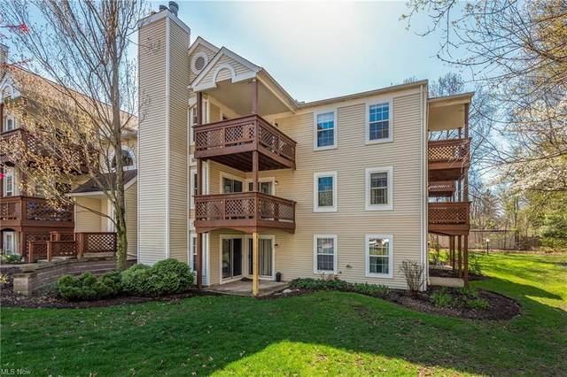 1448 Cedarwood B3, Westlake, OH 44145 (MLS #4269538) :: The Art of Real Estate