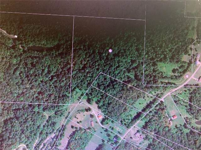 Caddy Road, Bowerston, OH 44695 (MLS #4269682) :: Select Properties Realty