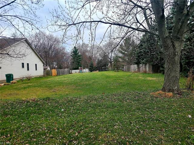 S/L B-2 Dunham Road, Maple Heights, OH 44137 (MLS #4269838) :: The Jess Nader Team | REMAX CROSSROADS