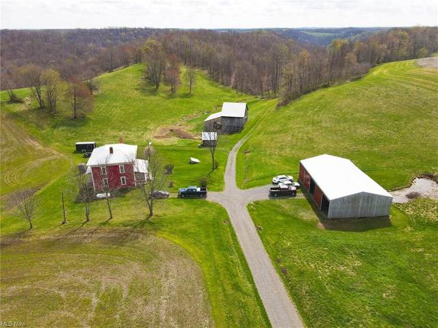 87800 Dewell Road, Scio, OH 43988 (MLS #4269930) :: RE/MAX Edge Realty