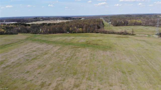 Maplevale Drive, Canfield, OH 44406 (MLS #4269966) :: Keller Williams Chervenic Realty