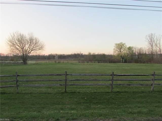 Music Street, Newbury, OH 44065 (MLS #4269995) :: Keller Williams Chervenic Realty