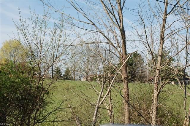Ryan Road, Lafayette, OH 44256 (MLS #4270019) :: Keller Williams Chervenic Realty