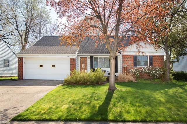 3467 Colletta Lane, Cleveland, OH 44111 (MLS #4270413) :: RE/MAX Edge Realty