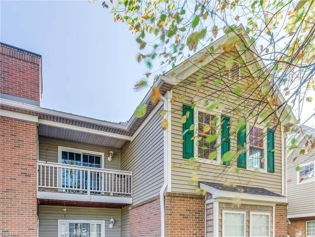 3284 Lenox Village Drive #203, Fairlawn, OH 44333 (MLS #4270575) :: The Crockett Team, Howard Hanna