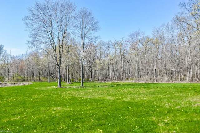 0000 Edson Road, Kent, OH 44240 (MLS #4270797) :: The Holden Agency