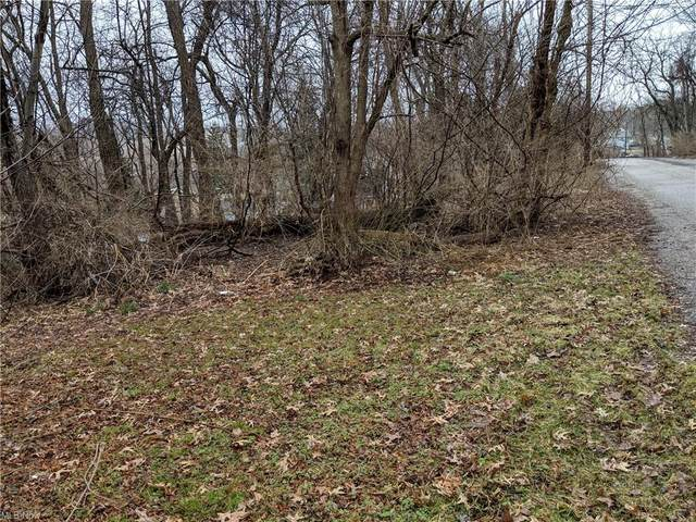Bellfield Avenue, Akron, OH 44312 (MLS #4271020) :: Tammy Grogan and Associates at Cutler Real Estate