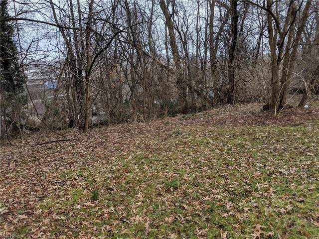 Bellfield Avenue, Akron, OH 44312 (MLS #4271040) :: Tammy Grogan and Associates at Cutler Real Estate