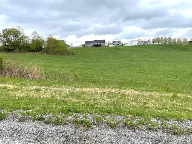 11498 Lion Lane, Minerva, OH 44657 (MLS #4271105) :: TG Real Estate