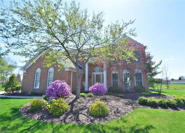 10290 Merriam Lane, Twinsburg, OH 44087 (MLS #4271110) :: The Holden Agency