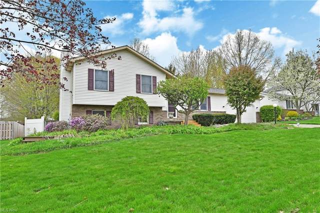 209 Terre Hill Drive, Cortland, OH 44410 (MLS #4271236) :: Select Properties Realty