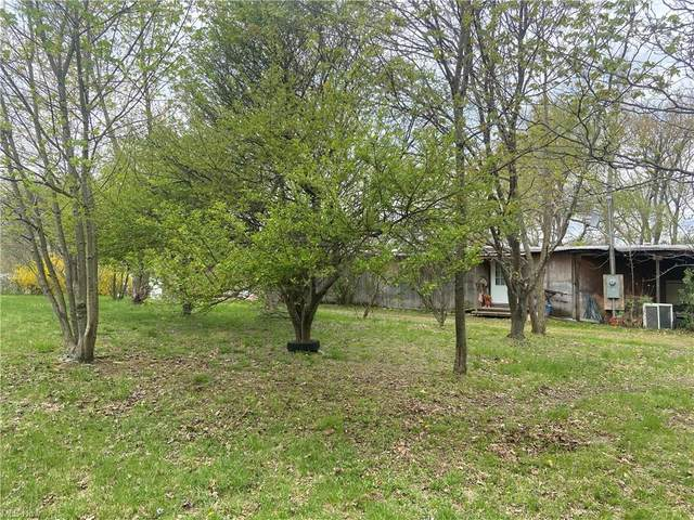 926 Township Line Road, Wellsville, OH 43968 (MLS #4271360) :: TG Real Estate