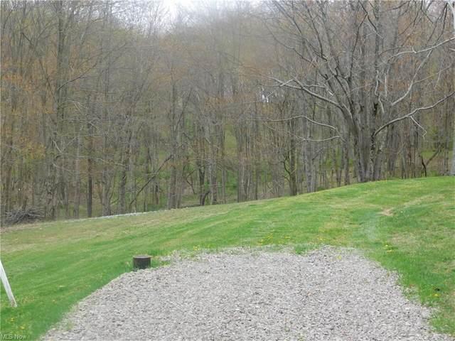 Blue Spruce Lane, Weirton, WV 26062 (MLS #4271504) :: The Jess Nader Team | RE/MAX Pathway