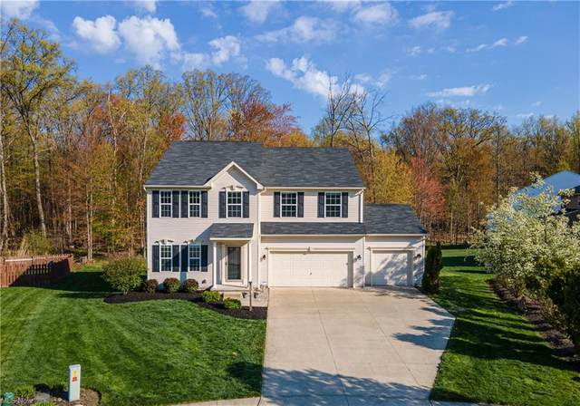6272 Oak Branch Circle, Lorain, OH 44053 (MLS #4271853) :: The Jess Nader Team | RE/MAX Pathway