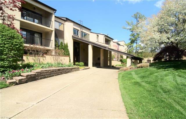 1012 Bunker Drive #206, Fairlawn, OH 44333 (MLS #4271958) :: The Kaszyca Team