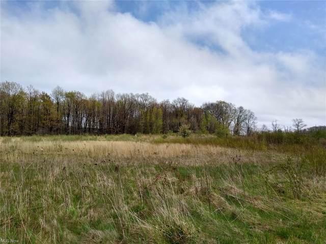 Timber Pointe Trail, Mantua, OH 44255 (MLS #4272288) :: The Kaszyca Team