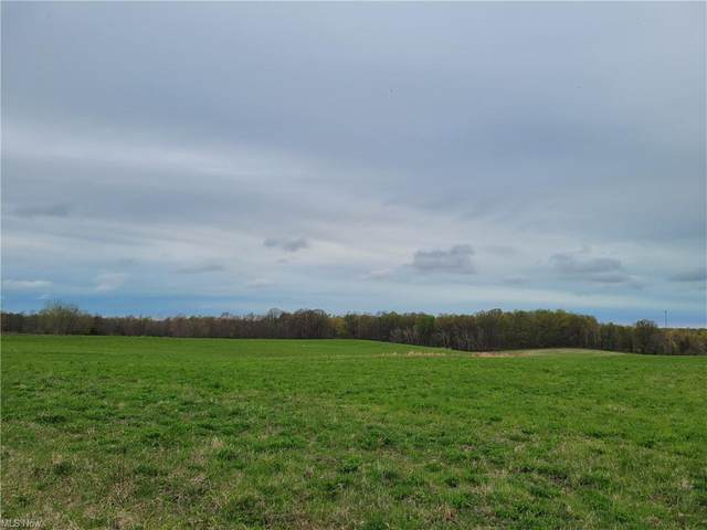 Hatches Corners Road, Conneaut, OH 44030 (MLS #4272369) :: Select Properties Realty