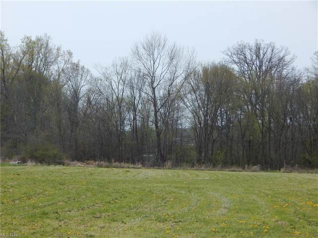 Buffham Road, Seville, OH 44273 (MLS #4273081) :: The Art of Real Estate