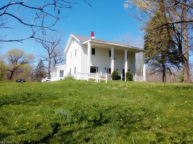 701 State Road, Geneva, OH 44041 (MLS #4273492) :: Keller Williams Legacy Group Realty