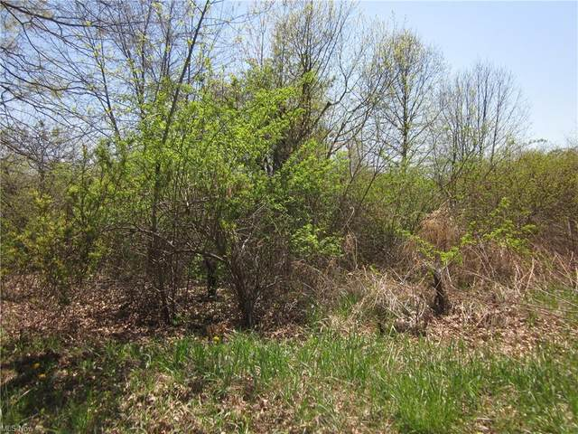 VL Clark, Atwater, OH 44201 (MLS #4273574) :: TG Real Estate