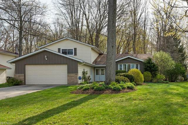 7155 Cottesmore Lane, Solon, OH 44139 (MLS #4273639) :: The Holly Ritchie Team