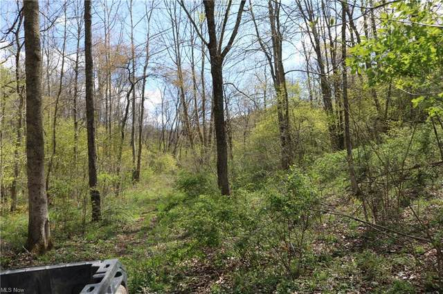 56382 County Road 5, West Lafayette, OH 43845 (MLS #4273684) :: RE/MAX Edge Realty
