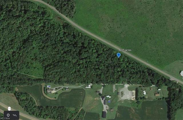 East Liverpool Rd, Lisbon, OH 44432 (MLS #4273785) :: The Kaszyca Team