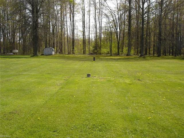 Ireland Road, Rome, OH 44085 (MLS #4274227) :: The Crockett Team, Howard Hanna