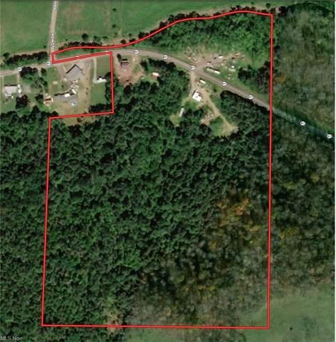 19055 State Route 821, Macksburg, OH 45746 (MLS #4274236) :: TG Real Estate